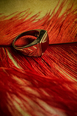 Ring on a feather  - p794m945921 by Mohamad Itani