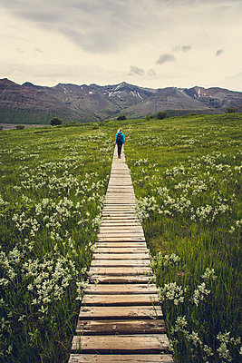 Woman hiking on a board walk trail towards the mountains - p1084m986806 by Operation XZ