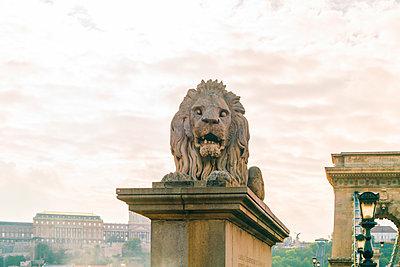 Löwenskulptur auf der Széchenyi-Kettenbrücke - p1332m1502322 von Tamboly
