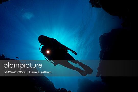 p442m2003583 von Dave Fleetham