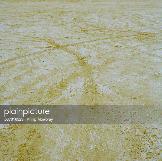p37816529 von Philip Mowbray
