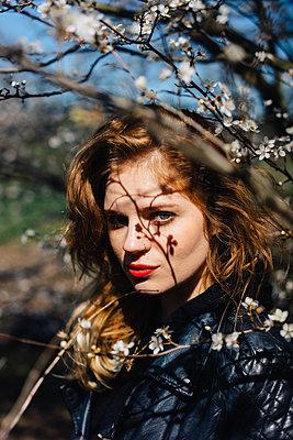 Young woman among white blossoms - p1184m1222711 by brabanski
