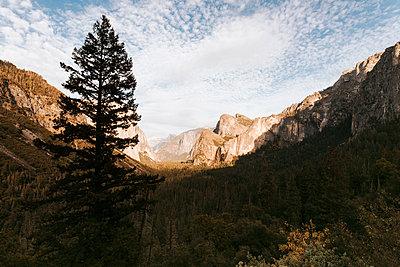 Classic Yosemite - p1507m2141307 by Emma Grann