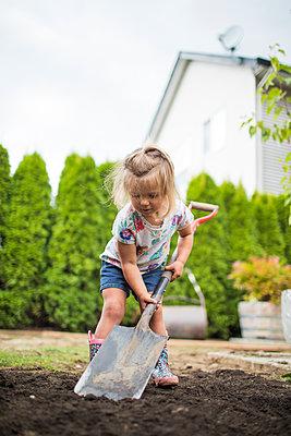 Cute blonde toddler using shovel in her backyard. - p1166m2208481 by Cavan Images