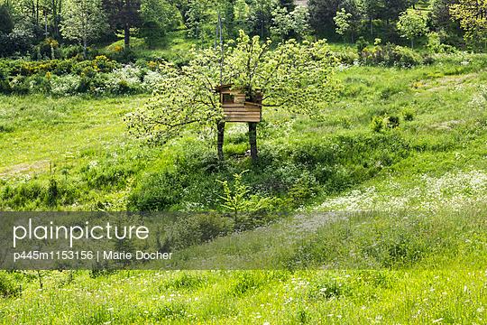 p445m1153156 von Marie Docher