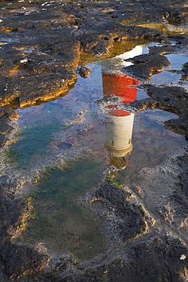 Portland Bill lighthouse reflected in a rock pool - p8714079 by Adam Burton