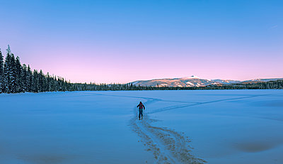 Rear view of female skier walking on snow covered field - p1166m1229515 by Cavan Images