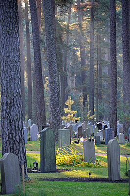 Graveyard in forest - p575m714933 by Stefan Ortenblad