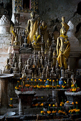 Buddhas - p817m755300 von Daniel K Schweitzer