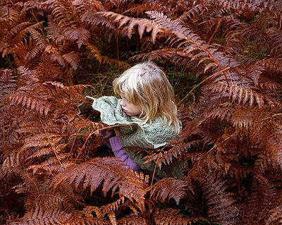 Girl sitting in fern field - p945m1196293 by aurelia frey