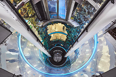 Aquarium in Shopping Mall - p390m1207966 von Frank Herfort