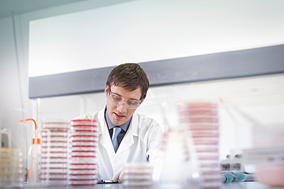 Male scientist researcher wearing safety glasses at workstation with petri dishes in research laboratory. - p429m2200758 by Monty Rakusen