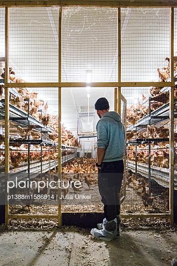 Hühnerstall mit Mensch - p1388m1586914 von Julia Unkel