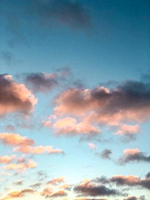 Pink clouds in the evening - p382m2100258 by Anna Matzen