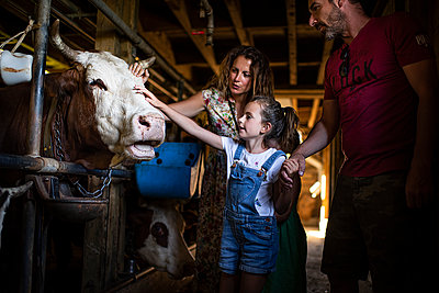 Family in cow stable - p1007m2219973 by Tilby Vattard