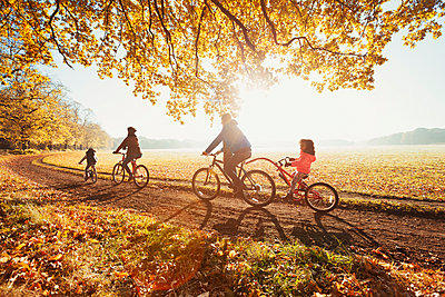 Young family bike riding in sunny autumn park - p1023m1402942 by Robert Daly