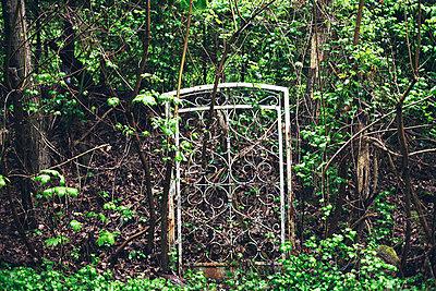 Entrance - p1006m1051155 by Danel