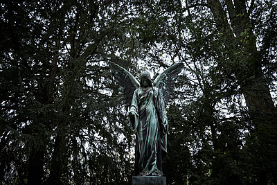 Statue of an angel in a graveyard - p1312m2100877 by Axel Killian