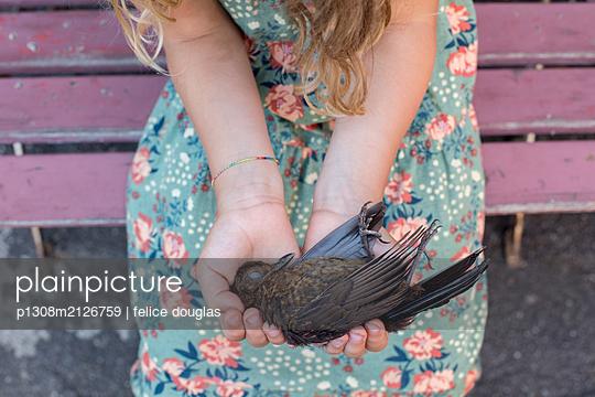 Girl holding a dead bird - p1308m2126759 by felice douglas