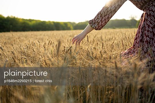 Woman in a cornfield - p1646m2293215 by Slava Chistyakov