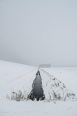 Snowy field - p1132m925490 by Mischa Keijser