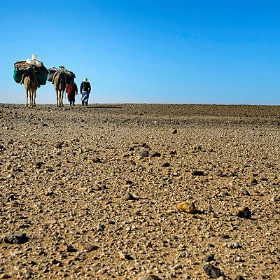 Durch die Wüste - p636m2021661 von François-Xavier Prévot