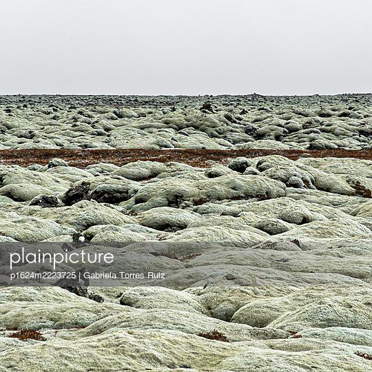 View over lava fields, Iceland - p1624m2223725 by Gabriela Torres Ruiz