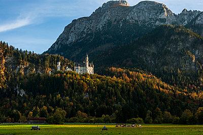 Neuschwanstein - p867m1031621 by Thomas Degen