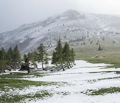 Cold wind - p1113m1214990 by Colas Declercq