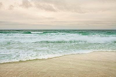 Florida - p1362m1226658 by Charles Knox