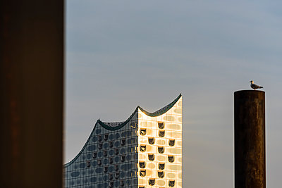 Glasfassade - p488m1074204 von Bias