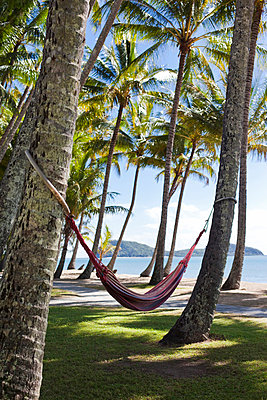 Australia, Queensland, Cairns. Hammocks amongst coconut palms at Palm Cove. - p652m716713 by Andrew Watson
