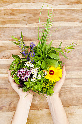 Person holding edible flowers and herbs - p92411763f by sah