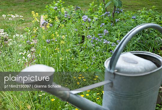 p116m2193397 by Gianna Schade