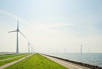 On and off shore wind turbines at IJsselmeer lake, Netherlands - p429m1469370 by Mischa Keijser