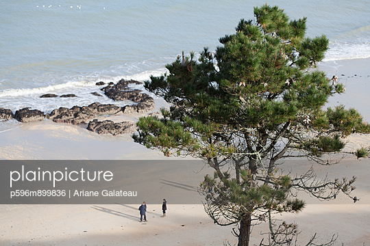 Bretonische Küste - p596m899836 von Ariane Galateau