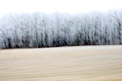Blick aus dem Autofenster - p1258m1538715 von Peter Hamel