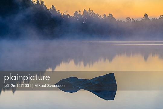 p312m1471331 von Mikael Svensson