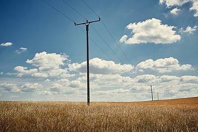 Wheat field - p1200m1118859 by Carsten Görling