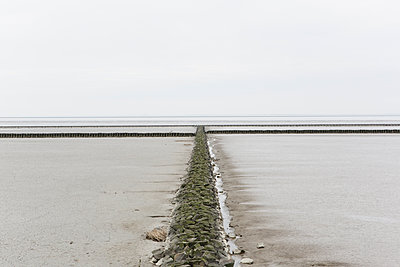 Wattenmeer - p1357m1207542 von Amadeus Waldner