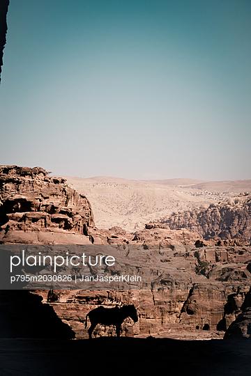 Silhouette eines Esel vor Bergkette in Petra - p795m2030826 von Janklein
