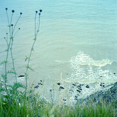 White Cliffs of Dover - p1063m2071779 by Ekaterina Vasilyeva