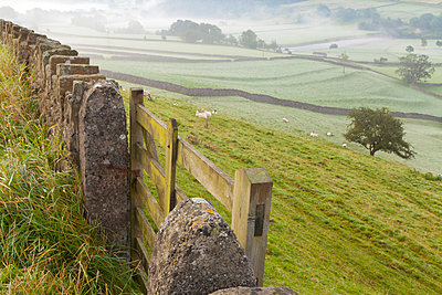 Gate in stone wall and field, near Burnsall, Yorkshire Dales National Park, Yorkshire, England, United Kingdom, Europe - p871m807435 by Miles Ertman