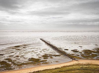 Morsumer Kliff - p9180045 von Dirk Fellenberg
