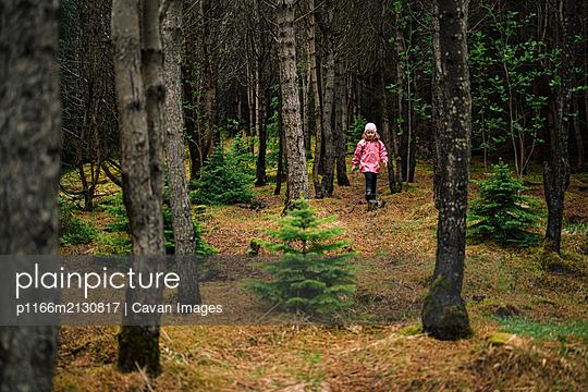 Curious girl wandering in Icelandic woods - p1166m2130817 by Cavan Images