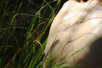 Gräser am Rücken - p417m716168 von Pat Meise
