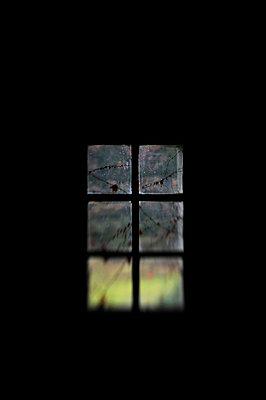 Verschwommener Blick in den Garten - p8290072 von Régis Domergue