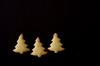 Tannenbäume - p4470396 von Anja Lubitz