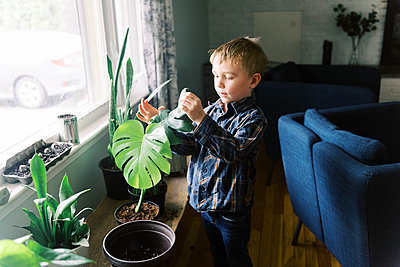 Little happy boy admiring his propagated monstera philodendron. - p1166m2174303 by Cavan Images
