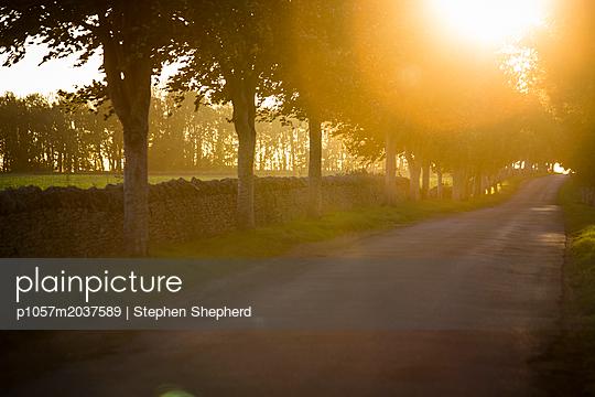 Straße im Sonnenlicht - p1057m2037589 von Stephen Shepherd